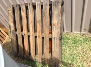 Timber pallet Merewether Newcastle Area Preview