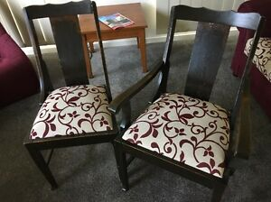 Dining chairs Marcoola Maroochydore Area Preview