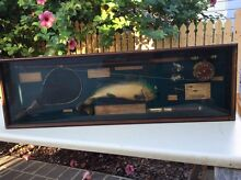 Antique collectable in box frame Idalia Townsville City Preview