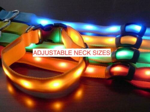 LED RECHARGEABLE COLLAR glow light-up Dog (s, m, l, xl) Cat (xs) Pet Safety USB