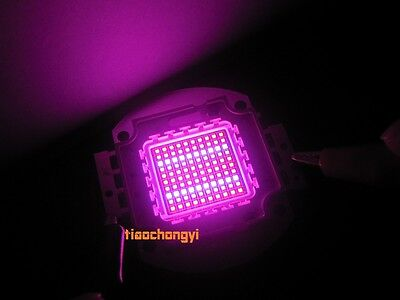 100w High Power Led Chip Plant Growing Hydroponic Red Blue 41 450nm 660nm Diy