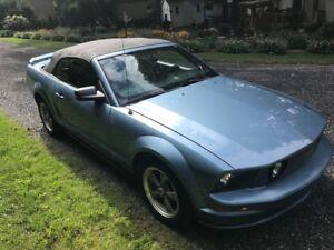 Mustang GT convertible 7200$ prix fin de saison
