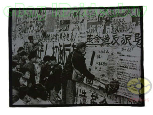 """8""""x6""""old photograph People Pasted up Slogans to Support Cultural Revolution1966s"""