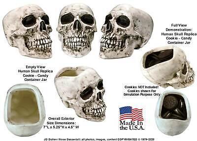 Human Zombie Skeleton Skull Replica Ceramic Candy Cookie Jar #183602 Made in USA