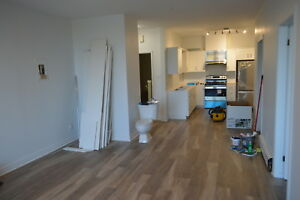 One Bedroom Apartment  in Downtown St. Catharines - RENOVATED