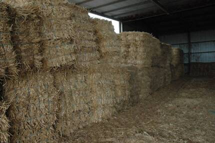 HAY - for Cattle, Sheep & Goats