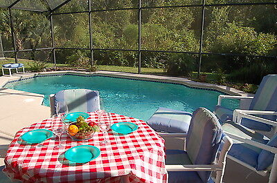 4626 Disney Area Vacation Homes For Rent  4 Bed With Conservation View 2 Weeeks