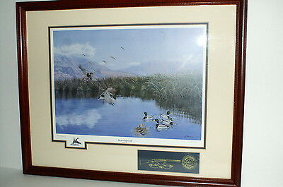 Morning Call   Mallards Signed Limited Edition Duck Print