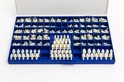 New Polycarbonate Temporary Dental Crowns Box Kit 360 Pcs W Crown Mold Guides