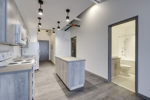 Brand New Modern Loft Style Apartments | Close to Downtown