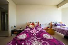 Elegant  Master  Twin Room Share In Haymarket CBD Haymarket Inner Sydney Preview