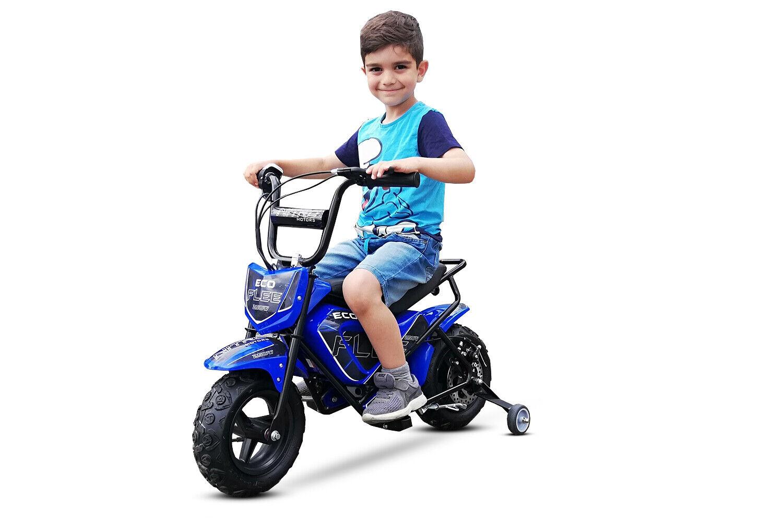250W 24V Eco Flee Elektrobike Dirtbike Crossbike