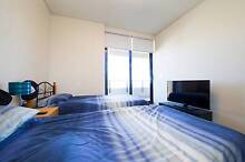 Luxury Apartment in Sydney CBD Close to Everything for ONE MALE Chippendale Inner Sydney Preview