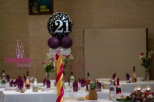 PARTY HIRE AND DECORATION Seven Hills Blacktown Area Preview