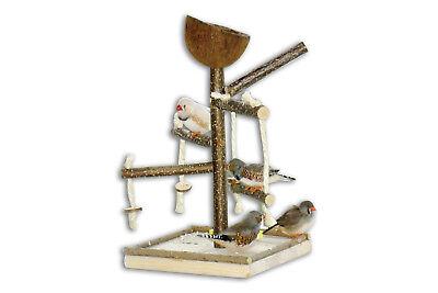 Toller VOGELSPIELPLATZ mit Schaukel für Vögel zum Austoben- Vogelspielzeug