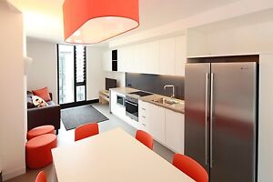 Single room available at Iglu student accommodation half price!! Brisbane City Brisbane North West Preview
