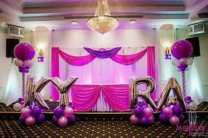 90% OFF  BIRTHDAY WEDDING PARTY DECORATION FOR LOWEST CHAIR COVER 90c Mount Druitt Blacktown Area Preview