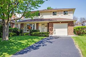 4 Bedroom House for Rent in Thornhill (Near Yonge and Hwy 7 407)