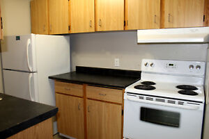 Newly Renovated Dover Glen Apartments |  216 Doverglen Cres SE