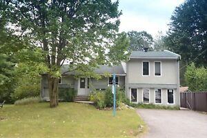 Maison - à vendre - Saint-Paul - 19094055