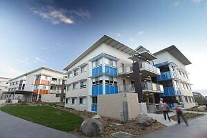 Apartments on campus at the University of Canberra! Bruce Belconnen Area Preview