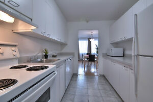 3 1/2  (1br)  Furnished Downtown - Luxury Building