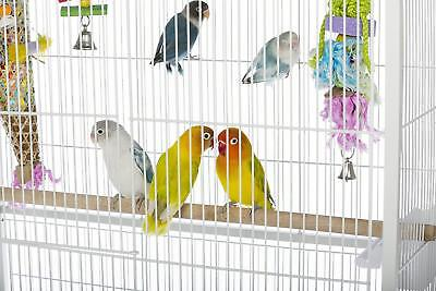 Birdcage Large Flight White Perches Bird Cage Parakeets Finches Canary Enclosed ()
