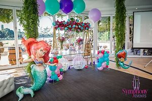 THEMED BIRTHDAY WEDDING RECEPTION DECORATION PARTY HIRE Epping Ryde Area Preview