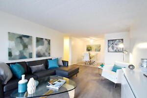 Updated One Bedroom Apartment in Owen Sound - Available Now!
