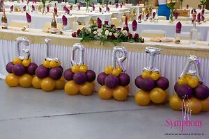 PARTY HIRE AND DECORATION Mount Lewis Bankstown Area Preview