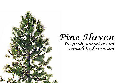 pinehaven7