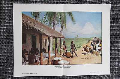 Baumwollernte in Deutsch-Ostafrika FARBDRUCK von 1908 DOA Kolonien Wilhelm Kuhne