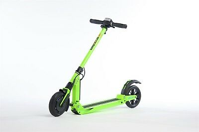 E-Twow Electric Two Wheeler Green Adult Kick Scooter Booster Model 33V 6.5 Amp