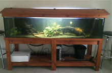 6ft fish tank with equipment CHEAP!!! Caboolture Caboolture Area Preview