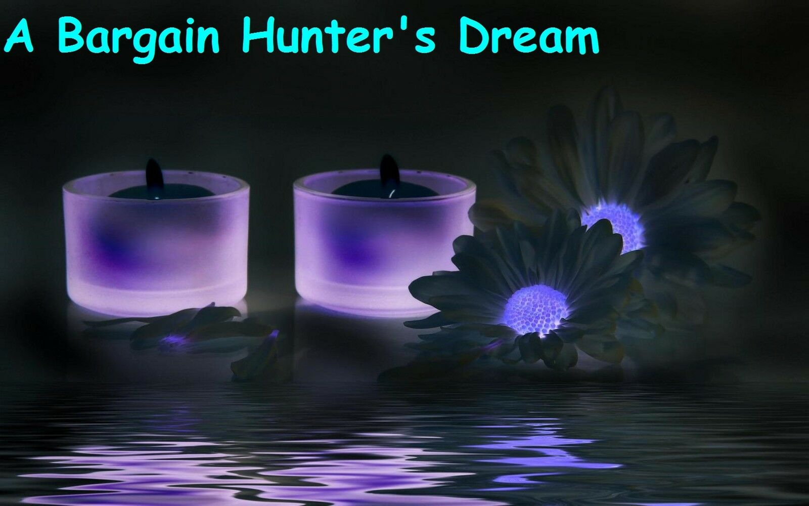 A Bargain Hunter's Dream