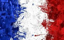 French Tutoring/speak French Glenfield Campbelltown Area Preview