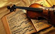 Wedding and Funeral Violinist Newcastle Newcastle Area Preview