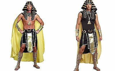 Dreamgirl King Of Egypt King Tut Ancient Adult Mens Halloween Costume 9893](Costume Of Egypt)