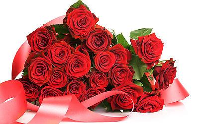 rosegardenshop2010