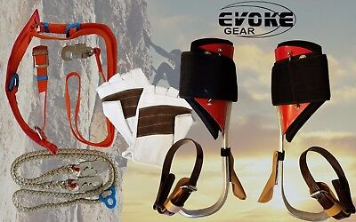 Tree Climbing Spike Setaluminum Pole Climbing Spurs Climber Harness Kit Glove