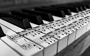 Wanted! Adults for Piano Lessons! Flagstaff Hill Morphett Vale Area Preview
