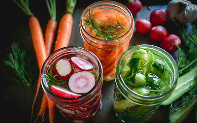STARTER CULTURE FOR MAKING RAW FERMENTED VEGETABLE ( INCLUDING PURE PROBIOTIC )
