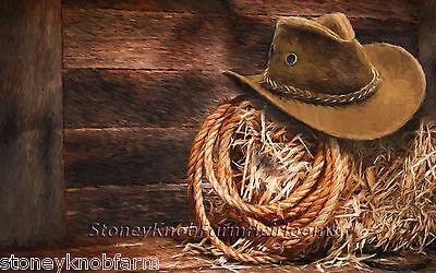 Cowboy Hat & Lasso ~ American West ~ DIY Counted Cross Stitch - Diy Cowboy Hat