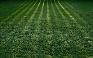 Lawn mowing and maintenance business for sale in Port Macquarie Port Macquarie Port Macquarie City Preview