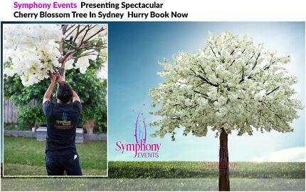 WEDDING DECORATION WITH CHERRY BLOSSOM TREE