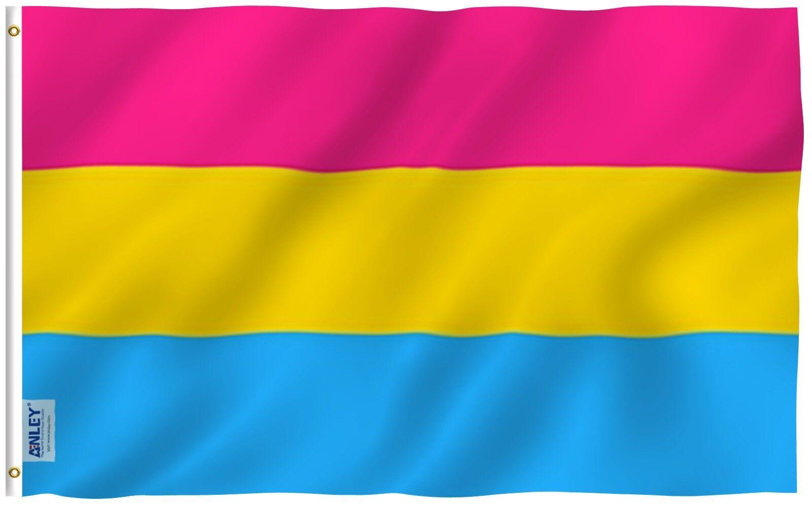 ANLEY Fly Breeze 3x5 Foot Pansexual Pride Flag Omnisexual LG