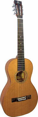 Ashbury AG-45 PARLOUR GUITAR! Small-bodied Acoustic Steel String! From Hobgoblin