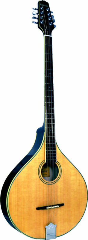 Ashbury AM-375 IRISH BOUZOUKI, Flat solid spruce top, solid maple body