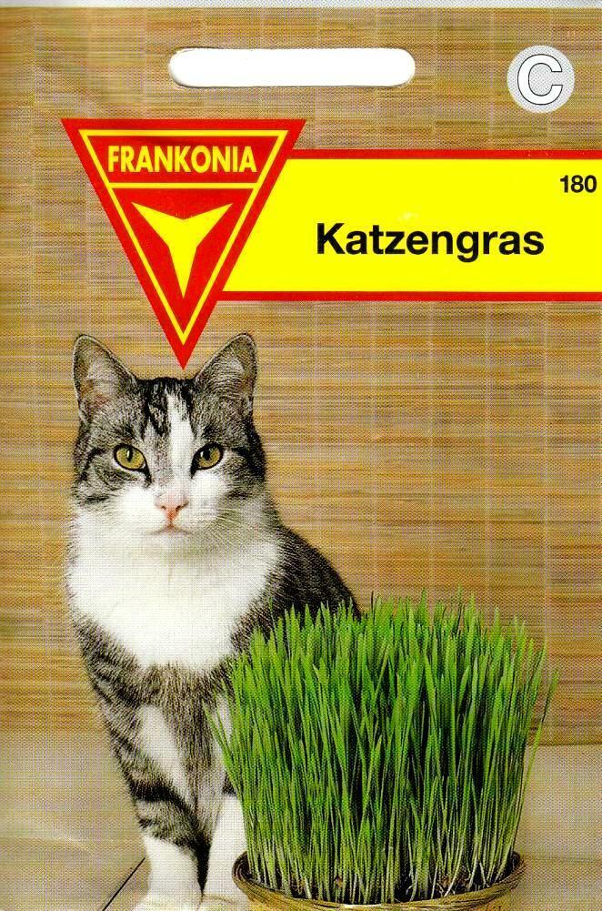 Katzengras - Vitaminreiches Grünfutter für Katzen aus Weidel & Lieschgras Samen