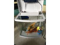 28L tropical fish tank with accessories